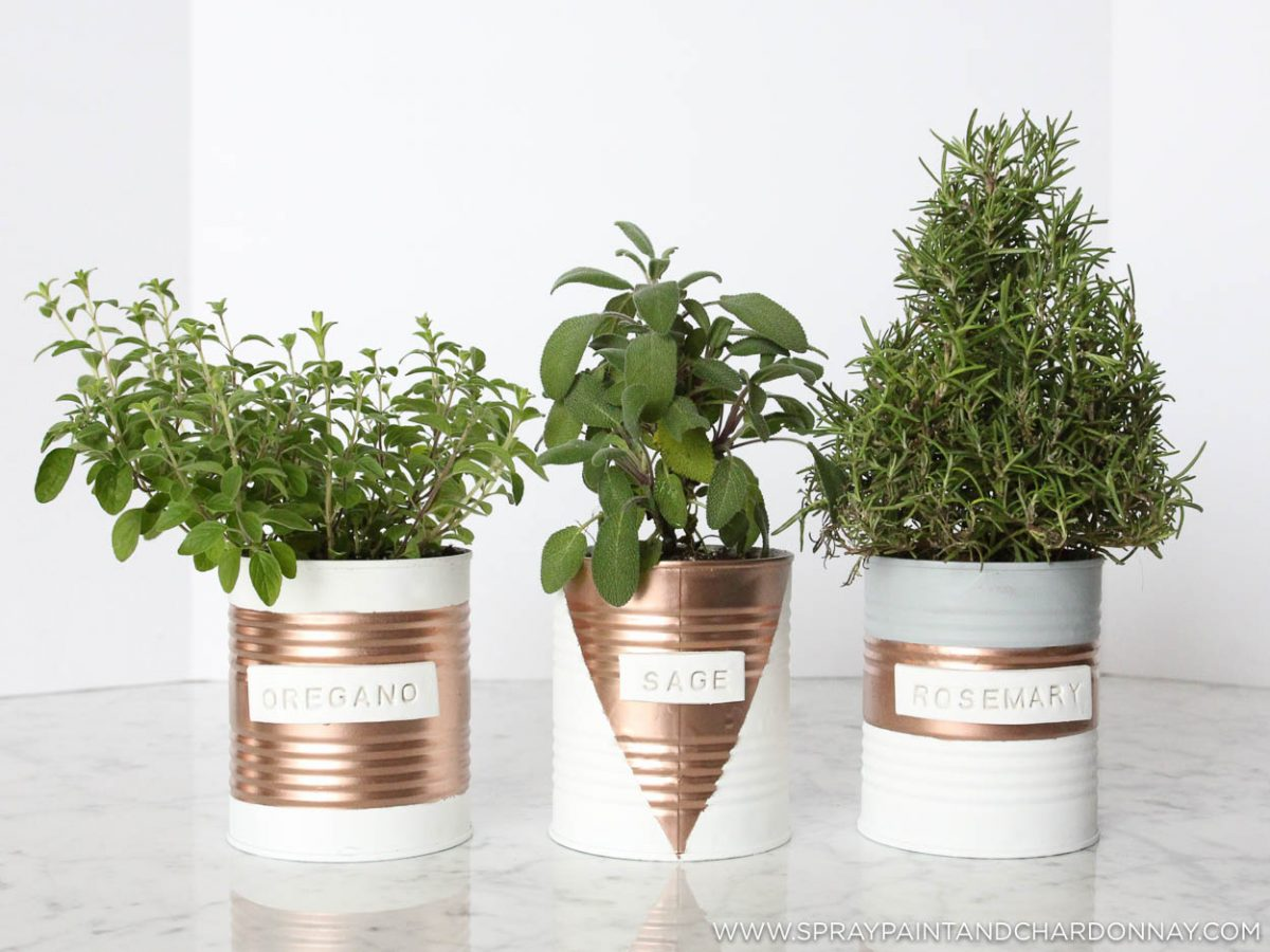 DIY: Indoor Herb Garden | Spray Paint & Chardonnay